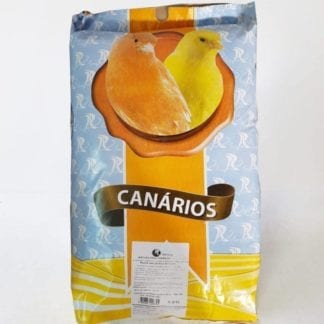 canarios con avena